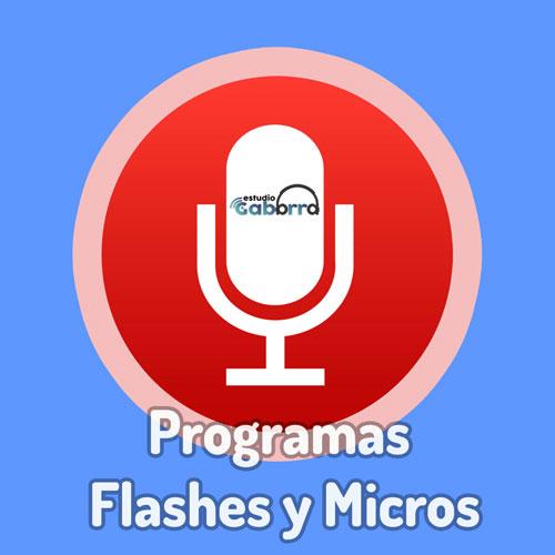 Programas y micros